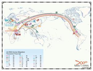 1_mt_migrationmap_FTDNA_Lucimar
