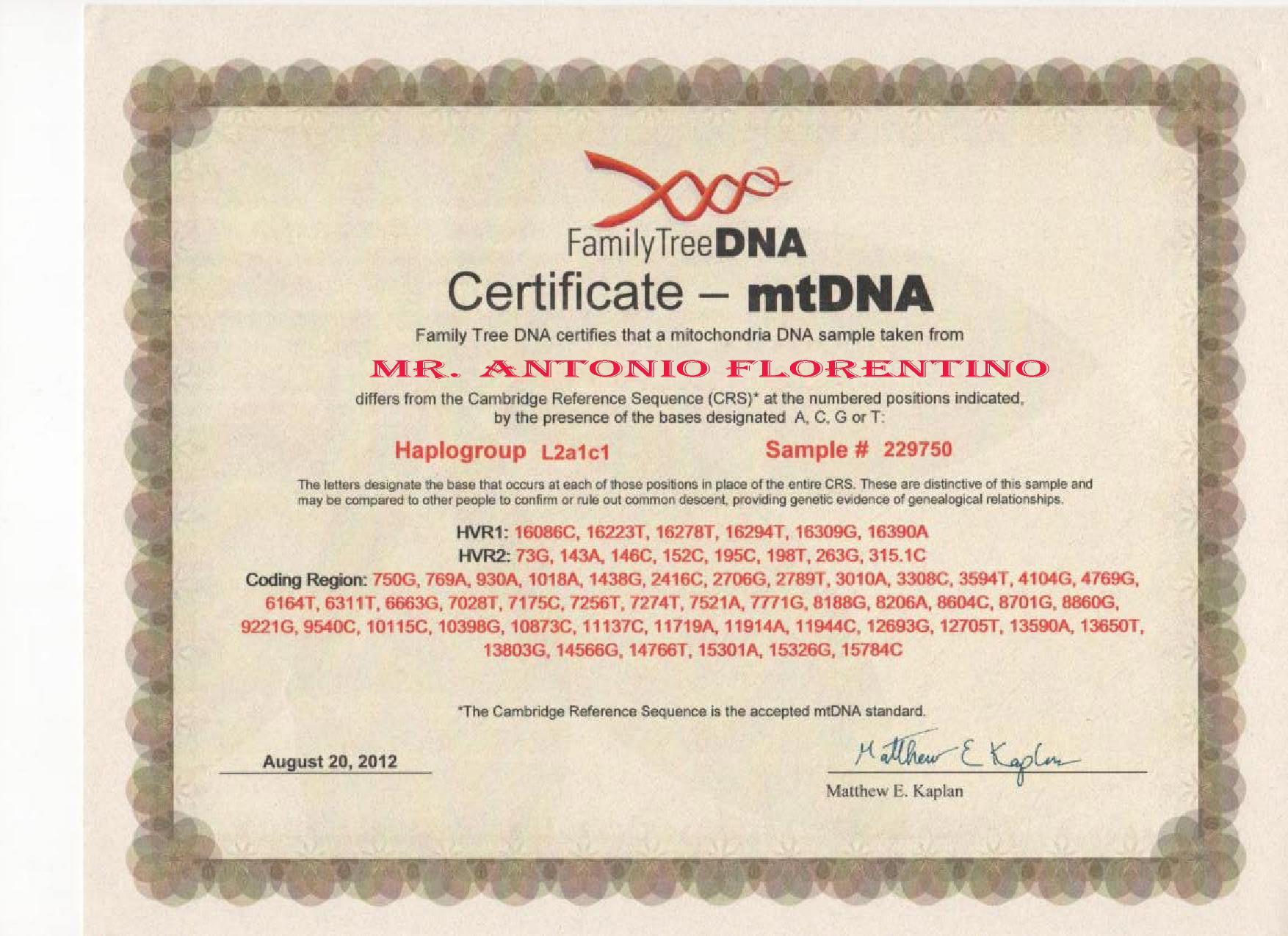 My Mother mtDNA Haplogroup L2a1c1 | MY GENEALOGY GENETICS